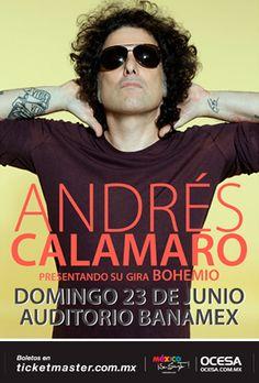 Andrés Calamaro ~ Auditorio Banamex (junio, 2013)