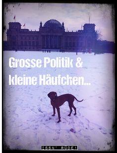 Hunde in die Politik. Dann kommt was Messbares dabei raus :-)