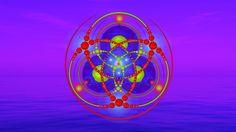 (EN) Janosh APP - What is a Hologram?