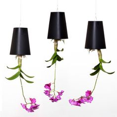Boskke Sky Planter 3 Pack Black, $49, now featured on Fab.