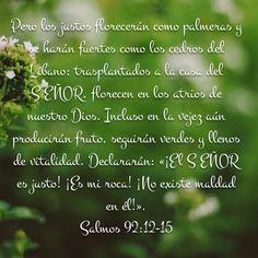 Salmos 92