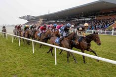 The race takes place during the Fairyhouse Easter Festival Easter Festival, Sports Page, Total Recall, White Flag, Beach Images, Grand National, Great Stories, All About Eyes