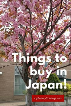 There's more to Japan than Tokyo. See another side of the country with these top easy day trips from Tokyo. There's a destination. Japan Travel Guide, Asia Travel, Day Trips From Tokyo, Okinawa Japan, Japan Japan, Japan Trip, Hiking Spots, Original Travel, Travel Vlog