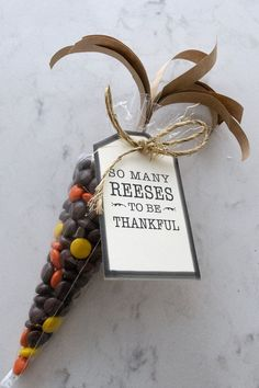 Reese's Tags for Thanksgiving Favors Free printable tags and craft project tutorial to create Indian corn using Reese's Pieces peanut butter candy for favors and gifts this Thanksgiving. So Many Reeses To Be Thankful gift tags. Thanksgiving Teacher Gifts, Thanksgiving Favors, Thanksgiving Parties, Thanksgiving Prayer, Thanksgiving Outfit, Thanksgiving Decorations, Happy Thanksgiving, Thanksgiving Recipes, Staff Gifts