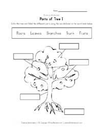 label parts of a tree parts tree school pinterest trees we and the o 39 jays. Black Bedroom Furniture Sets. Home Design Ideas