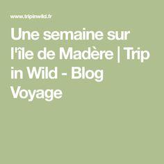 Une semaine sur l'île de Madère   Trip in Wild - Blog Voyage