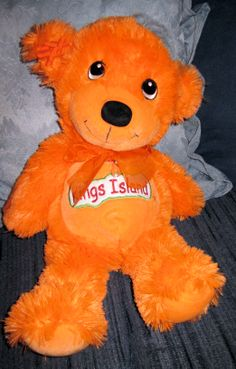 +Kings Island Support Bear on MS (Multiple Sclerosis)+
