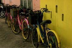 Thousand island, Pulau Tidung, yellow - Bicycles - Pulau Tidung, Indonesia