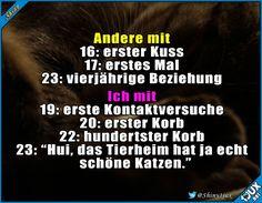 Und gleich so viele #foreveralone #Katzenliebe #Katzen #Katze #nurSpaß #fürimmersingle
