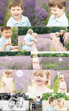 Family photo shoot in the lavender fields, Surrey