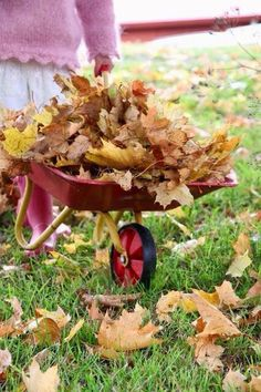 Little wheelbarrow filled with leaves Autumn Day, Autumn Trees, Autumn Leaves, Autumn House, Albert Camus, Autumn Garden, Fall Harvest, Simple Pleasures, Happy Fall