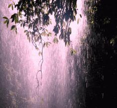 #waterfall, #gif