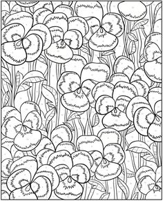65 Best Flower Colouring Pages Images Coloring Books Coloring