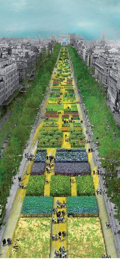 Via Blog de Paris A Champs Elysées, mais bela avenida do mundo, se transformou em um imenso jardim. Durante dois dias — 23 e 24 de Maio — a linha reta de um quilometro e larga de 27 metros, que separa...