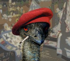 Emu War | This was in 1932 guys, we've nearly got emu seeking missiles now.