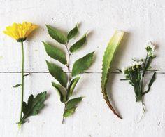 EO herbal blend. Aloe, chamomile, calendula and white tea extracts