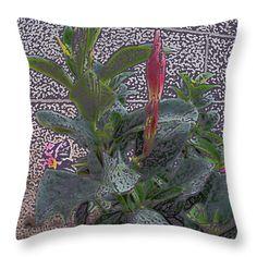 All Throw Pillows - Dipladenia Buds Throw Pillow by Lovina Wright