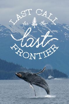 This roundtrip Seattle itinerary covers it all and you are invited to experience Alaska's many wonders this June. Click for more information!