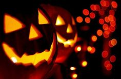 Halloween jack o lanterns Halloween Jack, Holidays Halloween, Halloween Pumpkins, Happy Halloween, Halloween Decorations, Halloween Town, Samhain Halloween, Halloween Tricks, Halloween Pictures