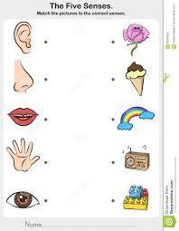 Resultado de imagen para imagen de los 5 sentidos