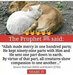 Ar- Rahman, Ar-Raheem: Most beneficient, Most Merciful: attributes of Allah. Islam Hadith, Islam Quran, Alhamdulillah, Islam Muslim, Prophet Muhammad Quotes, Quran Quotes, Hadith Quotes, Beautiful Islamic Quotes, Islamic Inspirational Quotes