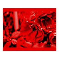 Poster-Color Therapy-Red 104