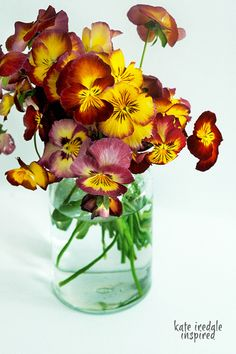 A jar of Pansies 1 by inspired by..., via Flickr