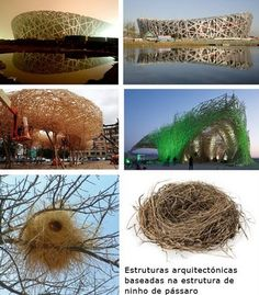 Biomimicry Architecture, Green Architecture, Concept Architecture, Architecture Design, Biomimicry Examples, City Drawing, Basic Style, Visual Communication, Urban Design