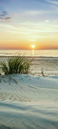 Photography of nature that reminds us to keep it simple. Nature is amazing at re. Photography of nature that reminds us to keep it simple. Nature is amazing at re. Beautiful Sunset, Beautiful Beaches, Beautiful World, I Love The Beach, Jolie Photo, Ocean Beach, Beach Sunrise, Summer Beach, Sunny Beach
