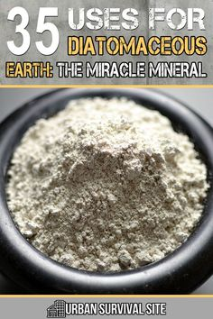 Diatomaceous earth kills critters in your food and around the house, it has many health benefits, it's cost-effective, and it's natural. Natural Home Remedies, Natural Healing, Herbal Remedies, Health Remedies, Natural Earth, Urban Survival, Survival Food, Survival Kits, Survival Prepping