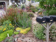 Lawn Removal - BBY 2010 - Sue's Garden - An Artful Renovation Garden Crafts, Plants, Plant Sale, Backyard Garden, Master Gardener, Ornamental Plants, Lawn, Garden Tours, Backyard