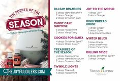 Winter Diffuser Blends To Diffuse For the Holidays – The Joyful Oilers