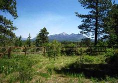 Moutain View Wood San Juan National Forest House Pagosa Springs CO