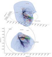 Two views of the Laniakea supercluster. : The Laniakea . Cosmic Web, Solar Mass, Astrophysics, Science And Nature, Milky Way, Three Dimensional, Tabula Rasa, Mathematics, Fields