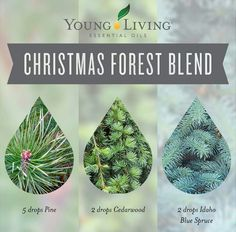 Fill your home with the sweet, earthy smells of the holidays naturally with this Christmas Forest Blend!