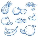Vektor: Set of different fruits: orange, coco nut, banana, apple, strawberry, apricot, blueberry, pineapple.  Hand drawn doodle vector illustration.