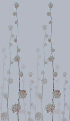 trove - ankaa wallpaper detail