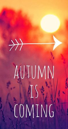 Autumn coming..