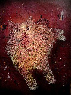 #cat #streetart #C215