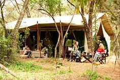 Book a Safari Holiday to Nairobi Tent Camp! An authentic tented camp in the heart of Nairobi National Park. Camping World, Tent Camping, Tanzania, Kenya, Joseph Oregon, Louisiana Bayou, Safari Holidays, Yellowstone Camping, Short Break