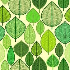 Resultado de imagen para vectores hojas verdes