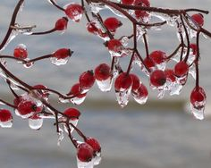 happy-winter-solstice-day-winter-photography