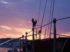 purple sunset,Limenaria port Purple Sunset, Secluded Beach, Wooden Boats, Utility Pole, Sailing, Greek, Wood Boats, Candle, Greece
