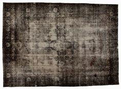 Moroso Carpet Reloaded 370x267