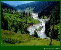 Kashmir valley,India / naveen sharma