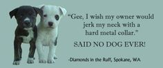 """""""Said no dog ever.""""  All animals, including humans, work to gain something they want or avoid something they don't.  Would you rather walk a dog who's hoping for a cool reward, or a dog who's hoping you won't hurt his neck?  One is under stress.  One is not."""