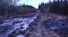 'Every Plant And Tree Died': Huge Alberta Pipeline Spill Raises Safety Questions As Keystone Decision Looms