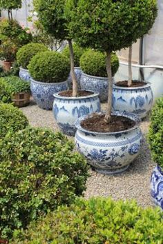 Chinoiserie Outdoors More