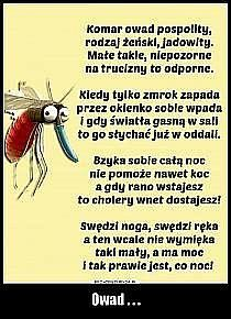Polish Language, Funny Pictures, Geek Stuff, Humor, Memes, Travel, Fanny Pics, Geek Things, Cheer