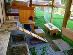 Another great set up.  (love the hole in the ground, gives bun a different level)